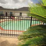 Our beautiful pool!  THIS is assisted living at its finest!